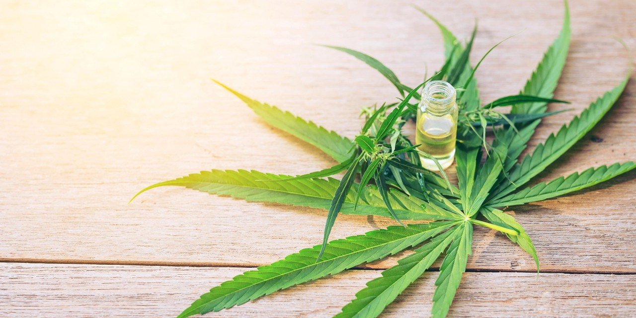 New cannabis oil products