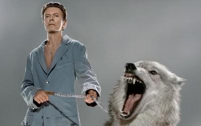 Bowie unseen
